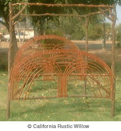 California Rustic Willow