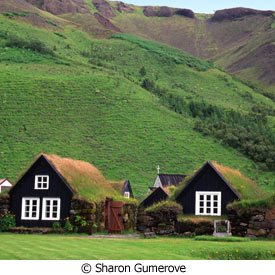green roof homes