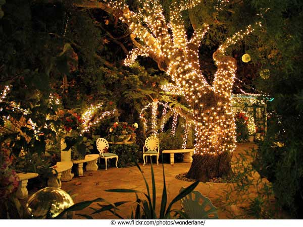 Nyiad design articles garden weddings - Night yard landscaping with outdoor lights ...