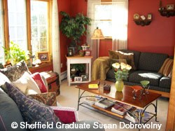 Susan Dobrovolny living room photo